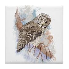 Watercolor Great Gray Owl Bird Nature Art Tile Coa