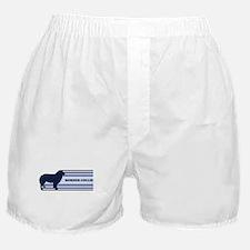 Border Collie (retro-blue) Boxer Shorts