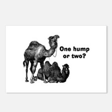 Funny Camels Postcards (Package of 8)