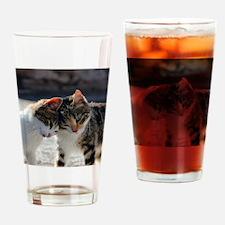 Cat_2015_0103 Drinking Glass