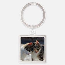 Cat_2015_0103 Square Keychain