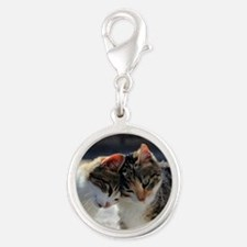 Cat_2015_0103 Silver Round Charm