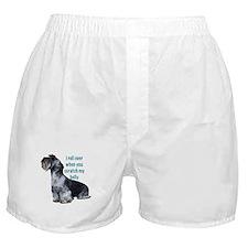 cesky terrier belly Boxer Shorts