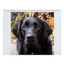 Black Labrador Wall Calendar