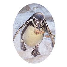 """""""penquin""""Oval Ornament"""