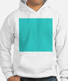 modern abstract teal Hoodie