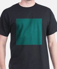 solid color teal T-Shirt