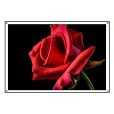 Red Rose Sideways Banner