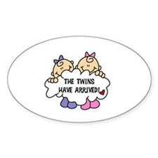 Twin Girls Arrived Oval Decal