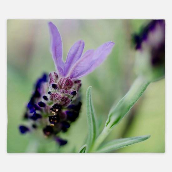 Spanish Lavender King Duvet