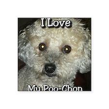 "Love My Poo-Chon Square Sticker 3"" x 3"""