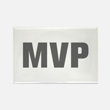 MVP-Akz gray Magnets
