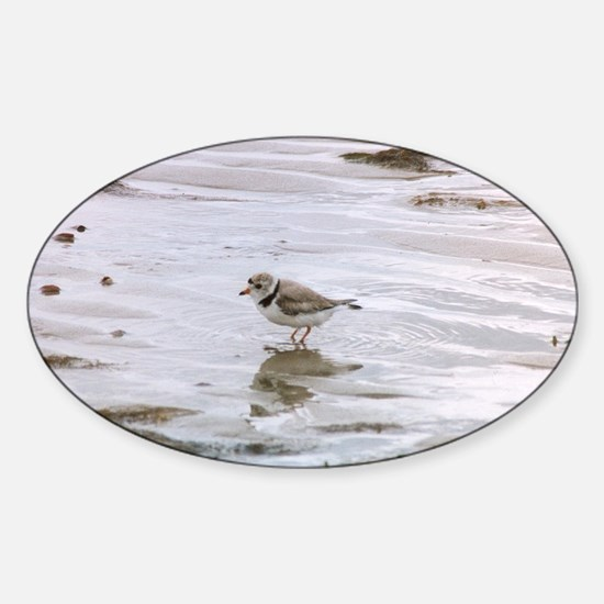 Cute Piping Sticker (Oval)