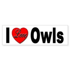 I Love Owls Bumper Sticker for Owl Lovers