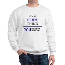 Cute Seamed Sweatshirt