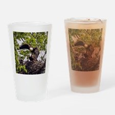 Bald Eagle Family Drinking Glass