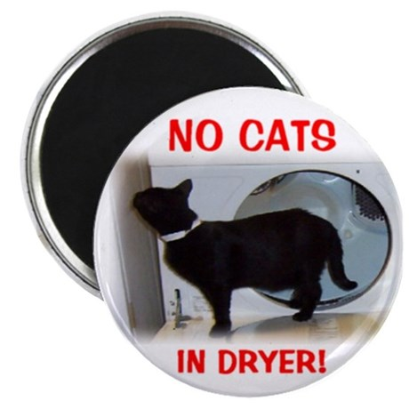 Cat in Dryer Magnet