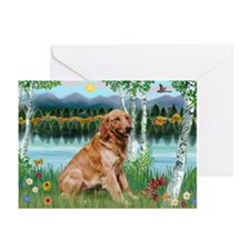 Golden in Birch Country Cards (Pk of 10)