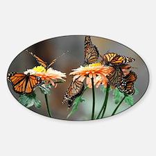 Monarch Butterflies Decal