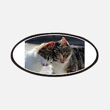 Cat_2015_0103 Patch