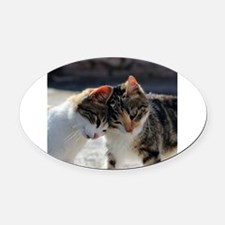 Cat_2015_0103 Oval Car Magnet