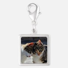 Cat_2015_0103 Charms