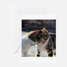Cat_2015_0103 Greeting Cards