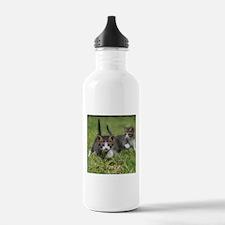 Cat_2015_0102 Water Bottle