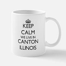 Keep calm we live in Canton Illinois Mugs