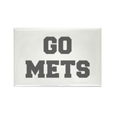 METS-Fre gray Magnets