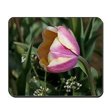 Dainty Tulip Mousepad
