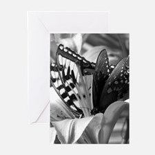 Black and White Butterfly Love Greeting Cards