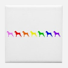 Rainbow Colored Boxers Tile Coaster