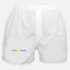 Rainbow Colored Boxers Boxer Shorts
