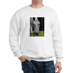 Appaloosa Sweatshirt