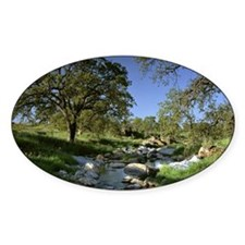 Countryside Landscape Photo Decal