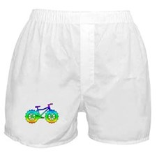 fat tire logo reinbow Boxer Shorts