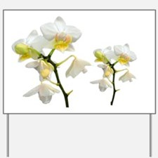 beautiful white orchid flowers. Yard Sign