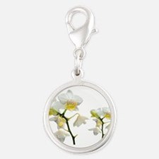 beautiful white orchid flowers. Charms