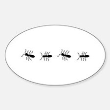 ANTS Decal