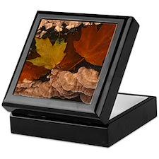 Fall Color Keepsake Box