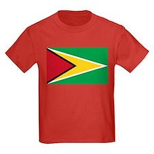Guyana Flag T