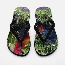 Hawaiian Rooster Flip Flops