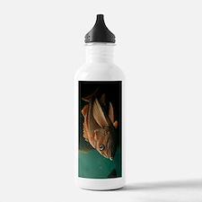 Fish 8965 Water Bottle