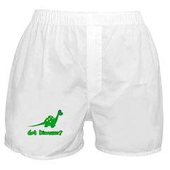Got Dinosaur? Boxer Shorts