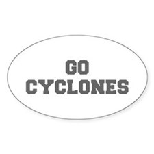 CYCLONES-Fre gray Decal