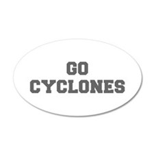 CYCLONES-Fre gray Wall Decal