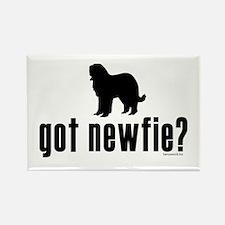 got newfie? Rectangle Magnet (10 pack)