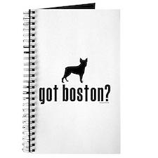 got boston? Journal