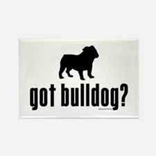 got bulldog? Rectangle Magnet (10 pack)